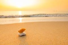 Άμμος στην παραλία Στοκ Εικόνες