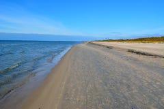 Άμμος της θάλασσας της Βαλτικής παραλιών Στοκ Εικόνες