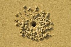 άμμος τρυπών καβουριών Στοκ φωτογραφίες με δικαίωμα ελεύθερης χρήσης