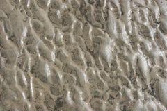 άμμος υγρή Στοκ φωτογραφία με δικαίωμα ελεύθερης χρήσης