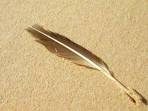 άμμος φτερών στοκ εικόνα