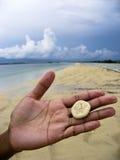 άμμος χεριών δολαρίων παρα Στοκ Εικόνες