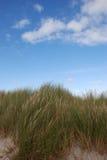 άμμος χλόης παραλιών Στοκ Εικόνες