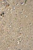 άμμος στοκ εικόνα