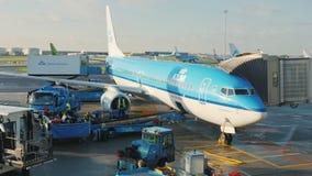 Άμστερνταμ, Κάτω Χώρες, τον Οκτώβριο του 2017: Από το αεροπλάνο της επιχείρησης KLM ξεφορτώνει τις αποσκευές των επιβατών απόθεμα βίντεο