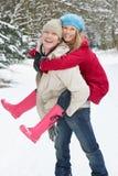 Άνδρας που δίνει το σηκωήταν στην πλάτη γυναικών στη χιονώδη δασώδη περιοχή στοκ φωτογραφίες με δικαίωμα ελεύθερης χρήσης
