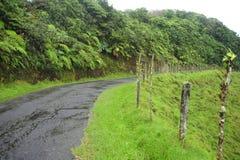 Άνεμοι αγροτικοί δρόμων μέσω της επαρχίας Valverde Vega στη Κόστα Ρίκα στοκ φωτογραφία