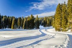 Άνεμος ανώμαλη να κάνει σκι διαδρομή Στοκ Φωτογραφίες
