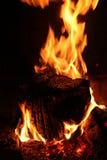 Άνετη πυρά προσκόπων στοκ εικόνες με δικαίωμα ελεύθερης χρήσης