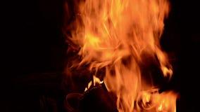 Άνετος λίγο κάψιμο πυρκαγιάς απόθεμα βίντεο