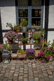Άνετος κήπος με τα λουλούδια Στοκ φωτογραφίες με δικαίωμα ελεύθερης χρήσης