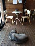 Άνετος καφές στη Σαγκάη Στοκ φωτογραφία με δικαίωμα ελεύθερης χρήσης