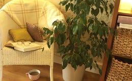 Άνετος χρόνος σπασιμάτων με ένα βιβλίο και έναν καφέ Στοκ Φωτογραφία