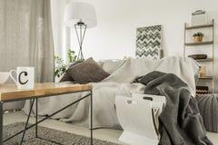 Άνετο βασικό εσωτερικό με τον καναπέ στοκ εικόνες