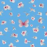 Άνευ ραφής άνθη ανοίξεων με την πεταλούδα Στοκ Φωτογραφία