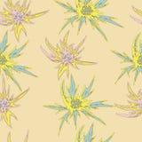 Άνευ ραφής άνθιση, floral σχέδιο Διανυσματική απεικόνιση