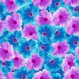 Άνευ ραφής άπειρο floral υπόβαθρο για το σχέδιο και την εκτύπωση Υπόβαθρο των φυσικών μπλε και πορφυρών βιολέτων Στοκ Εικόνες