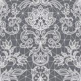 Άνευ ραφής άσπρη δαντέλλα Στοκ Εικόνες