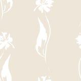 Άνευ ραφής άσπρο λουλούδι Στοκ Εικόνες