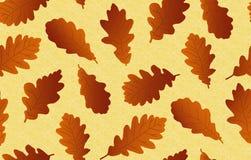 Άνευ ραφής ανασκόπηση με τα δρύινα φύλλα Στοκ εικόνες με δικαίωμα ελεύθερης χρήσης