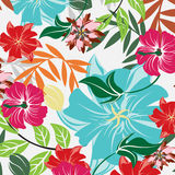 Άνευ ραφής απεικόνιση λουλουδιών ανοίξεων διανυσματική απεικόνιση