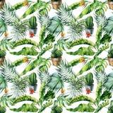 Άνευ ραφής απεικόνιση watercolor των τροπικής φύλλων, της ζούγκλας και της τέχνης κάκτων Στοκ Εικόνες