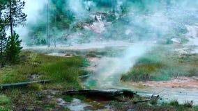 Άνευ ραφής βρόχος - γεωθερμικές καυτές ανοίξεις στη βροχή απόθεμα βίντεο