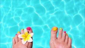 Άνευ ραφής βρόχος - τα γυμνά πόδια γυναικών με το frangipani ανθίζουν, τυρκουάζ νερό στο υπόβαθρο, τηλεοπτικό HD απόθεμα βίντεο