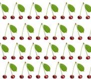 Άνευ ραφής γλυκό φρέσκο κεράσι σχεδίων το πράσινο φύλλο που απομονώνεται με Στοκ Φωτογραφίες