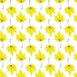 Άνευ ραφής διανυσματικό άσπρο κίτρινο υπόβαθρο τέχνης φύλλων σφενδάμου διανυσματική απεικόνιση
