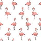 Άνευ ραφής διανυσματικό σχέδιο κινούμενων σχεδίων doodle Εξωτική τροπική σύσταση για την εκτύπωση, σχέδιο Ιστού, πρότυπο αφισών Σ Στοκ Εικόνες