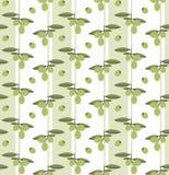 Άνευ ραφής διανυσματικό σχέδιο με τις ελιές Στοκ Φωτογραφία