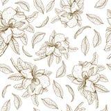 Άνευ ραφής διανυσματικό σχέδιο με το magnolia και τα φύλλα Βοτανική απεικόνιση διανυσματική απεικόνιση