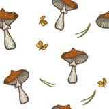 Άνευ ραφής διανυσματικό υπόβαθρο με τα μανιτάρια, τις βελόνες και τους σκώρους Amanita agari μυγών Στοκ Φωτογραφία