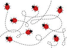 Άνευ ραφής διευκρινισμένο διάνυσμα σχέδιο Ladybug ελεύθερη απεικόνιση δικαιώματος