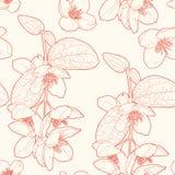 Άνευ ραφής εκλεκτής ποιότητας floral σχέδιο με το πλαστό πορτοκάλι Στοκ Εικόνα