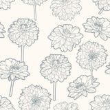 Άνευ ραφής ευγενές εκλεκτής ποιότητας floral σχέδιο με τα asters Στοκ εικόνα με δικαίωμα ελεύθερης χρήσης