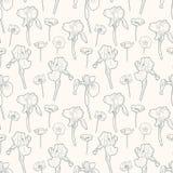 Άνευ ραφής ευγενές εκλεκτής ποιότητας floral σχέδιο με τις ίριδες και την παπαρούνα διανυσματική απεικόνιση