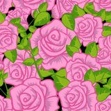 Άνευ ραφής θερινό Floral σχέδιο σχεδίων Στοκ εικόνες με δικαίωμα ελεύθερης χρήσης