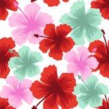 Άνευ ραφής θερινό Floral σχέδιο σχεδίων Στοκ φωτογραφία με δικαίωμα ελεύθερης χρήσης