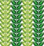 Άνευ ραφής διάνυσμα σύστασης φύλλων σμαράγδων απεικόνιση αποθεμάτων
