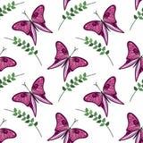 Άνευ ραφής διανυσματικό σχέδιο με τα έντομα, ζωηρόχρωμο υπόβαθρο με τις ιώδεις πεταλούδες και κλάδοι με τα φύλλα OM το άσπρο σκην Στοκ Εικόνα