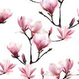 Άνευ ραφής διανυσματικό σχέδιο με το άνθος brunch Magnolia ελεύθερη απεικόνιση δικαιώματος