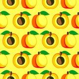 Άνευ ραφής διανυσματικό σχέδιο, φωτεινό συμμετρικό υπόβαθρο φρούτων με τα βερίκοκα, σύνολο και μισό πέρα από το ελαφρύ σκηνικό Στοκ Εικόνες