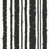 Άνευ ραφής διανυσματικό υπόβαθρο με το δάσος σημύδων Στοκ Εικόνες
