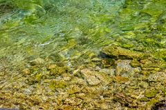 άνευ ραφής διανυσματικό ύδωρ προτύπων έγχρωμης εικονογράφησης ανασκόπησης Στοκ Εικόνες