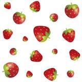 Άνευ ραφής διαφορετικό σχέδιο φραουλών μεγεθών που απομονώνεται στο άσπρο υπόβαθρο Στοκ φωτογραφίες με δικαίωμα ελεύθερης χρήσης