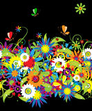 άνευ ραφής καλοκαίρι νύχτας ανασκόπησης floral ελεύθερη απεικόνιση δικαιώματος