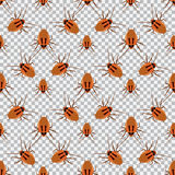 Άνευ ραφής κατσαρίδα σχεδίων σε ένα ελεγμένο υπόβαθρο Κατσαρίδα, κάνθαρος Στοκ εικόνες με δικαίωμα ελεύθερης χρήσης
