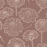 Άνευ ραφής καφετί εκλεκτής ποιότητας floral σχέδιο με τα asters διανυσματική απεικόνιση